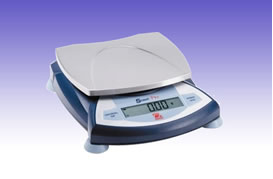 RS0096 Electronic Balance Model SPS402F