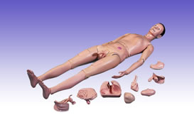 RS0210 The Basic Patient Care Manikin